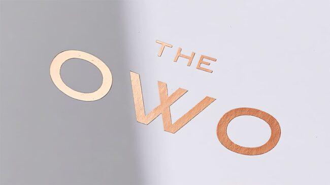 Logo della The OWO
