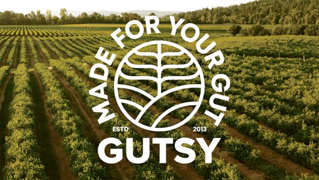Logo della Gutsy